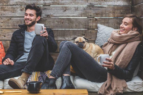Pourquoi un chat ou un chien peut réduire votre anxiété ?